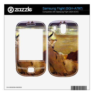 On the beach by Edouard Manet Skins For Samsung Flight