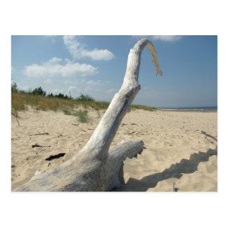 On the beach - Postcard