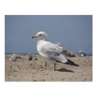 On the beach postcard