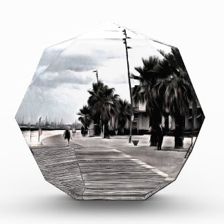 On the beachfront acrylic award