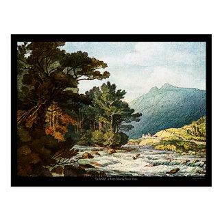 On The Dart Watercolor Painting Art Postcard! Postcard