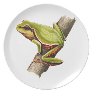 ON THE EDGE MELAMINE PLATE