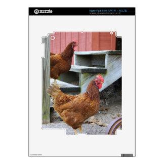 On the Farm iPad 3 Skins
