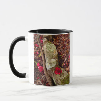 On The Forest Floor, mug