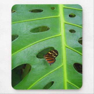 On the Green Mouse Pad