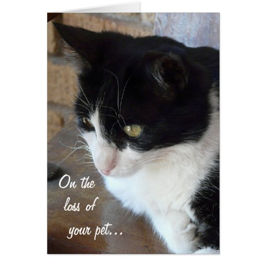 On the loss of your pet-Cat with poem. Card