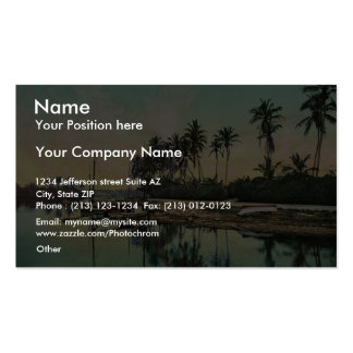 On the Miami River rare Photochrom Double-Sided Standard Business Cards (Pack Of 100)