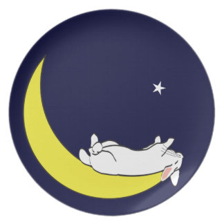 ON THE MOON DINNER PLATE