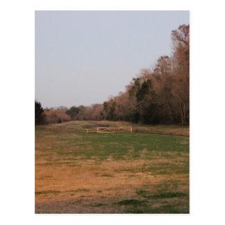 On the open range #2 postcard