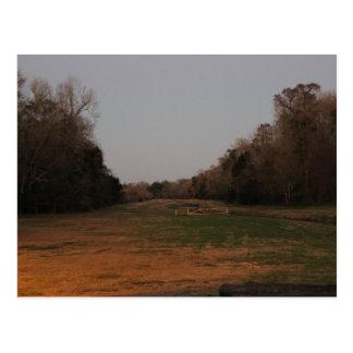On the open range postcard