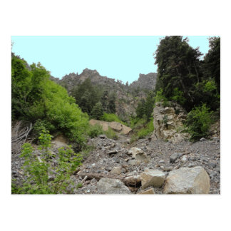 On the path to Timpanogos Cave Utah post card Postcard