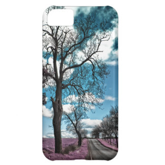 On the Pixie dust trail iPhone 5C Cover