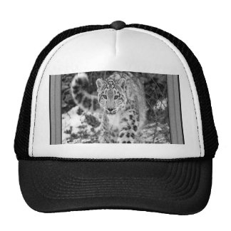 On the Prowl Cap Hats