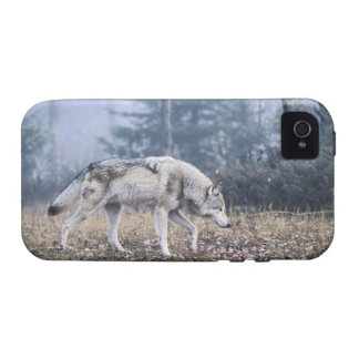 On the Prowl Case For The iPhone 4