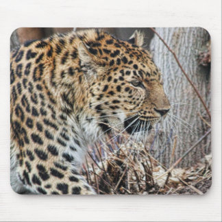 On The Prowl Mouse Pad