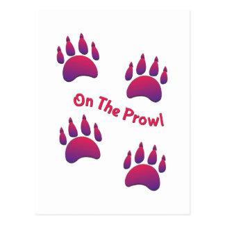On the Prowl Postcard