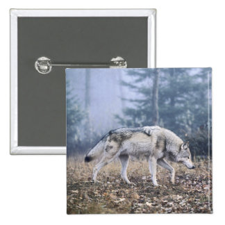 On the Prowl Timber Wolf 2 Inch Square Button