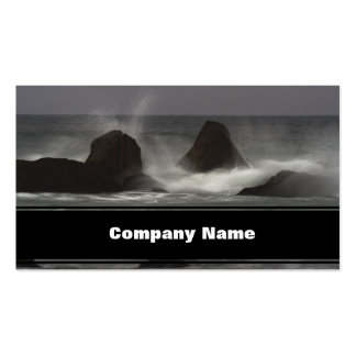 On The Rocks - White Point Beach, NS Business Card