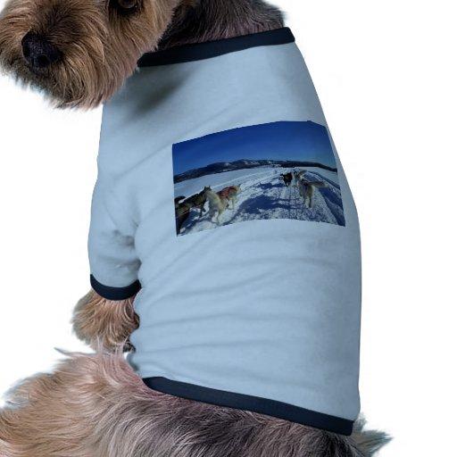 On the run dog t-shirt