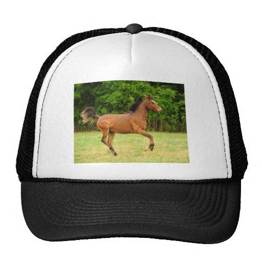 On the run trucker hat