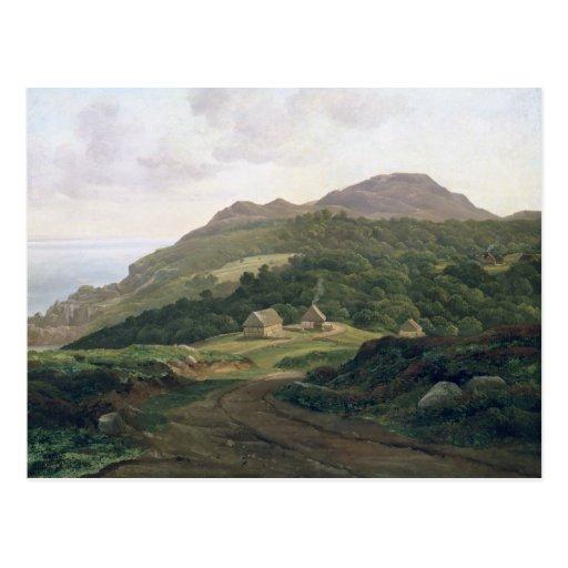 On the Swedish Coast, 1828 Post Card