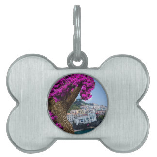 On the trips you see the wonder of different world pet name tag