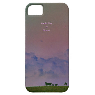On the Way to Forever iPhone SE/5/5s Case