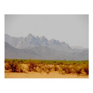 on the way to Lordsburg, NM Postcard