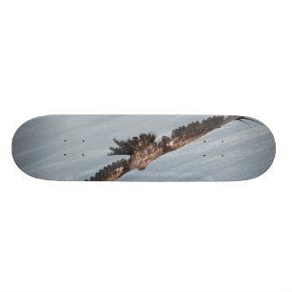 On The Wings Skate Board Deck