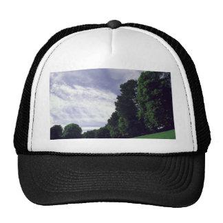on the wonk trucker hat
