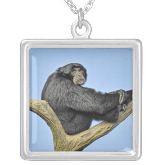 On Top of the World Gibbon Silver Plated Necklace