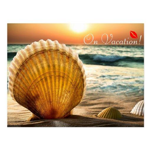 On Vacation romantic seashells on the beach kiss Postcard