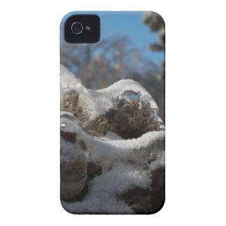 Once iPhone 4 Case-Mate Cárcasas