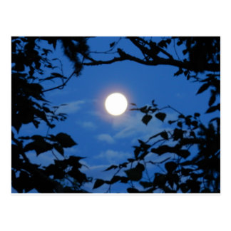 Once-in-a-Blue-Moon Postcard