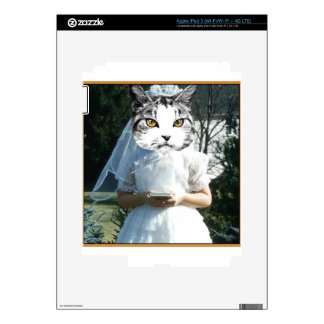 Once Kitten Now Cat iPad 3 Decal