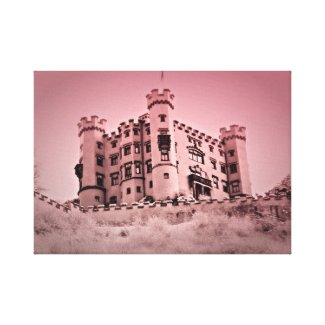 Once Upon A Castle Canvas Picture