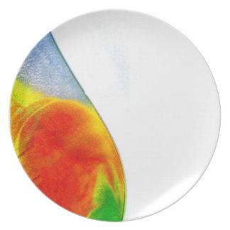 Onda del color platos para fiestas