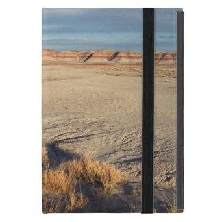 Onda del desierto Parque nacional del bosque ater iPad Mini Protector