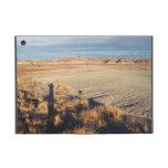 Onda del desierto: Parque nacional del bosque ater iPad Mini Protector