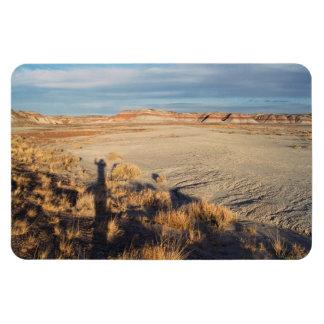 Onda del desierto: Parque nacional del bosque ater Imán