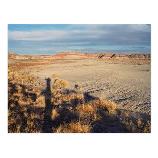 Onda del desierto: Parque nacional del bosque ater Postal