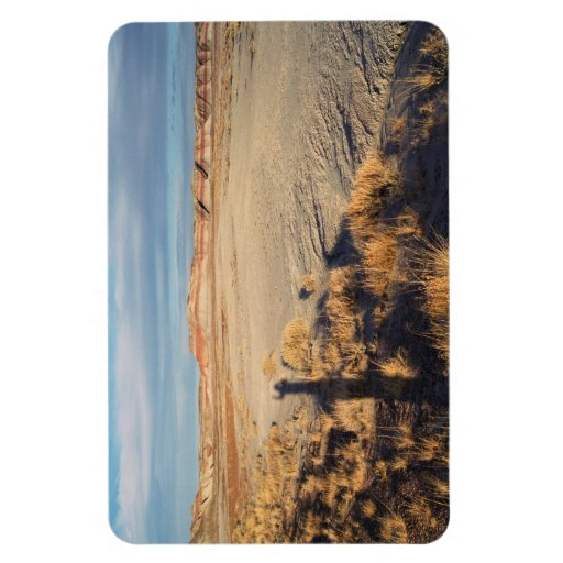Onda del desierto: Parque nacional del bosque Imanes Rectangulares