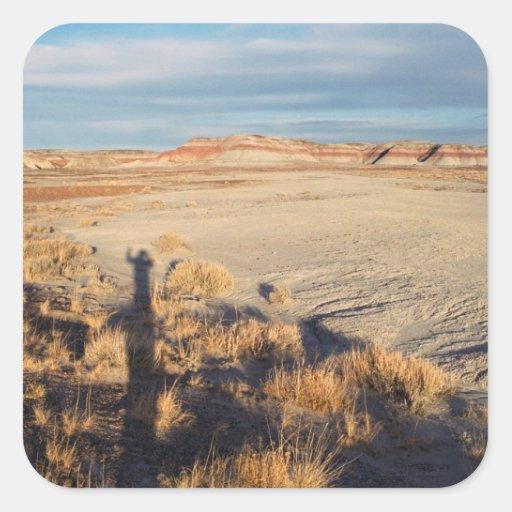 Onda del desierto: Parque nacional del bosque Pegatina Cuadrada