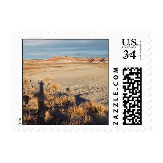 Onda del desierto - pequeña sellos