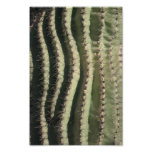 Onda del Saguaro Poster