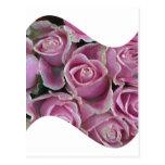 Onda rosada del rosa tarjetas postales