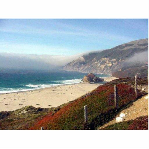 Ondas de la costa del océano fotoescultura vertical