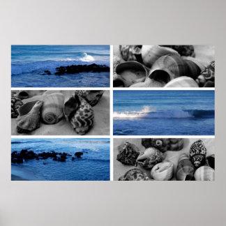 ondas y poster de las cáscaras ii