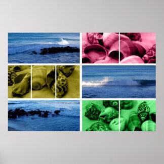 ondas y poster de las cáscaras v