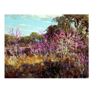 Onderdonk - árbol del capullo de rosa en la tarjeta postal